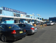 Sydney Fish Market - a must-visit when visiting Sydney!