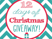MICE 12 Days of Christmas Giveaway