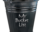 cherieladie, bucket list